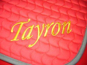 Equine tayron